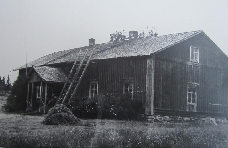 Kallio-Nikara_pieni.jpg