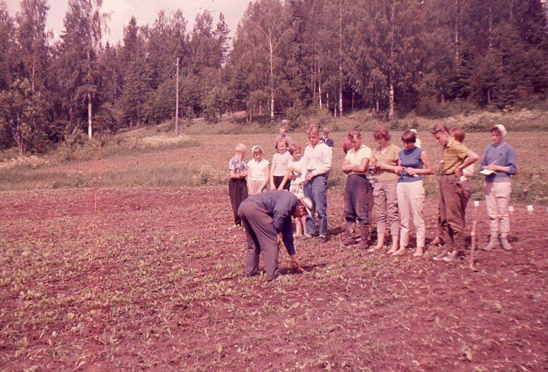 Maatalouskerhoneuvoja opastamassa kerhopalstan hoidossa Ilvesjärvellä.jpg