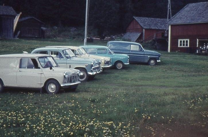Autot rivissä Ilvesjärven pihanurmikolla.jpg