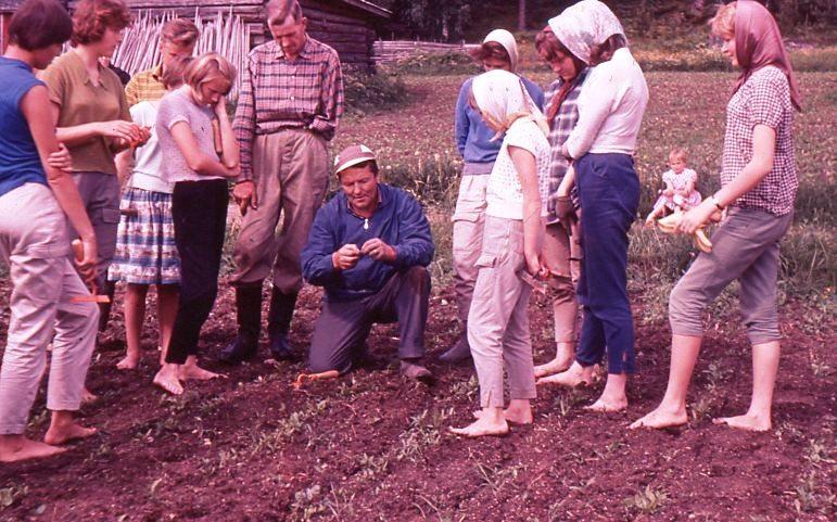 Maatalouskerhoneuvoja opastamassa sokerijuurikkaanhoidossa Ilvesjärvellä.jpg