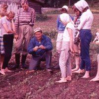 Maatalouskerhoneuvoja opastamassa sokerijuurikkaan hoidossa Ilvesjärvellä