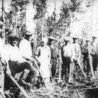 Metsänistutustalkoot