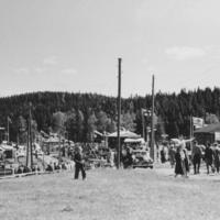 Maatalousnäyttely 1956, 3