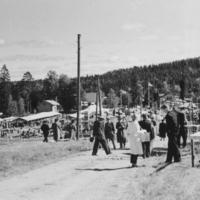 Maatalousnäyttely 1956, 2
